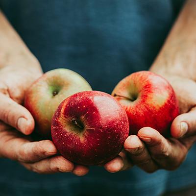 Drei Äpfel in offener Hand