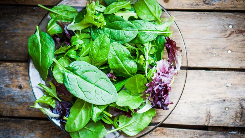 Salat Deutschland Mein Garten