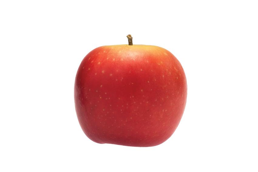 BVEO Rockit Apfel