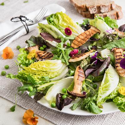 Pilze-Kräuter-Salat