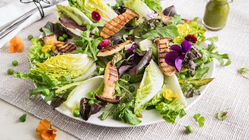 Verfickte Deutsche vögelt sich mit Salatgurke