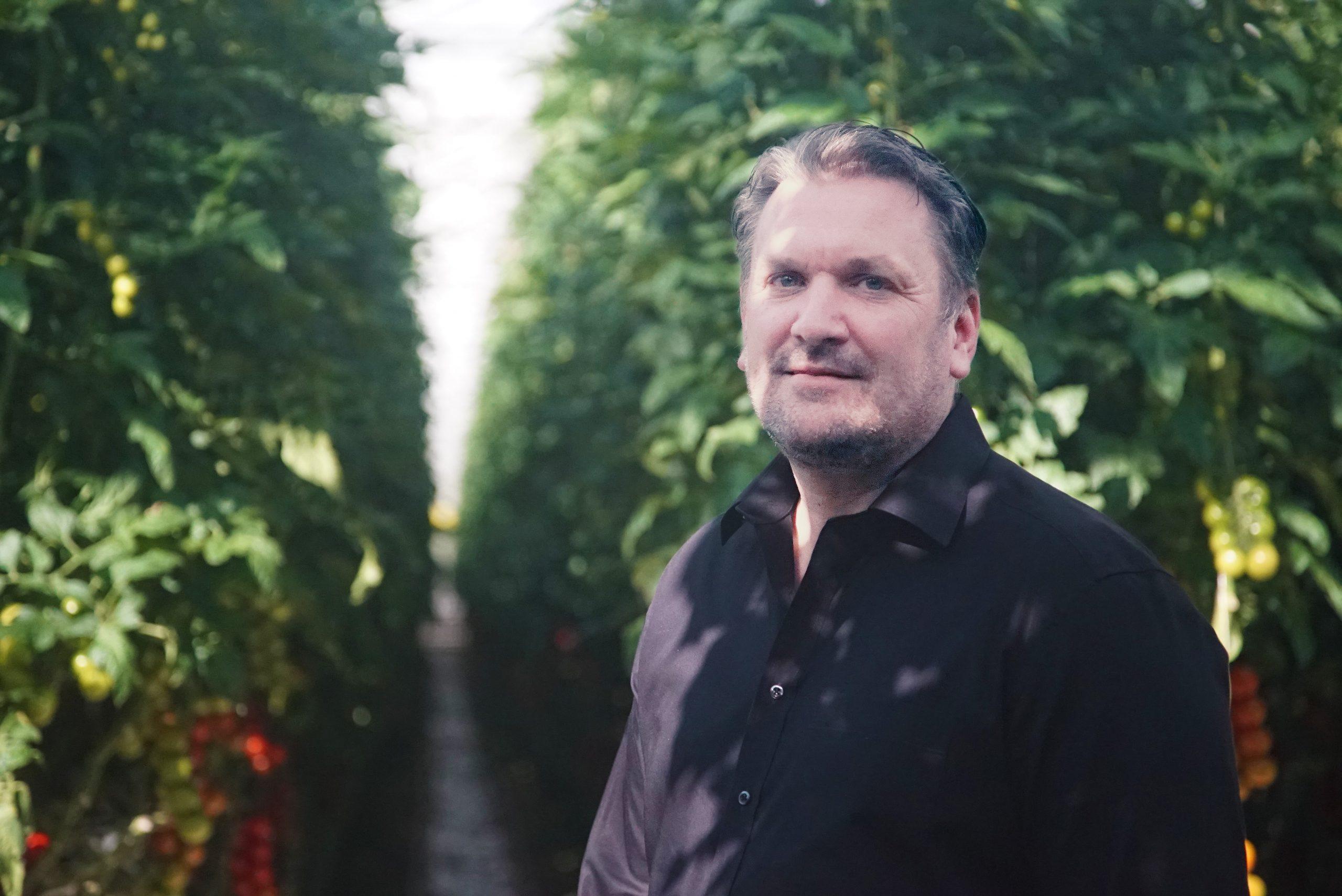 Carsten Knodt von der Neurather Gärtner GbR im Tomatenhaus