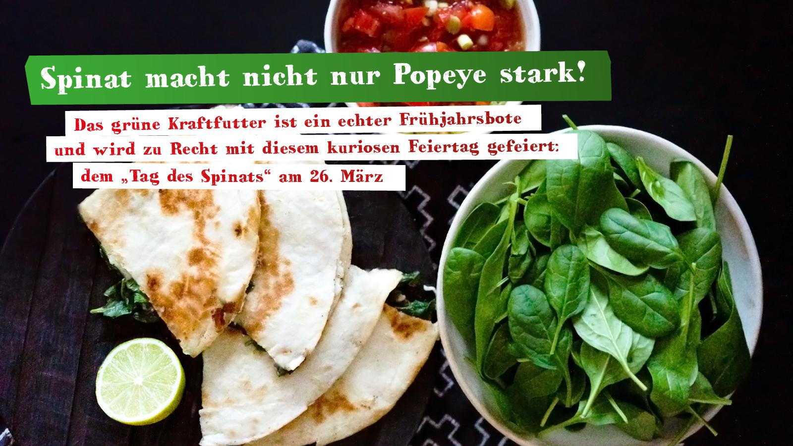 Quesadilla mit Spinatfüllung und Tomatensalsa