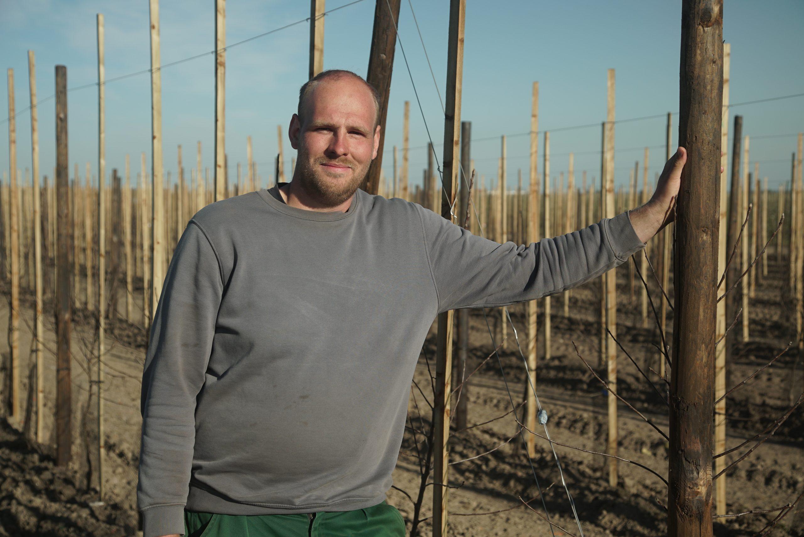 Jan Henrik Börger von Obstbau Börger auf der neu angelegten Apfelplantage